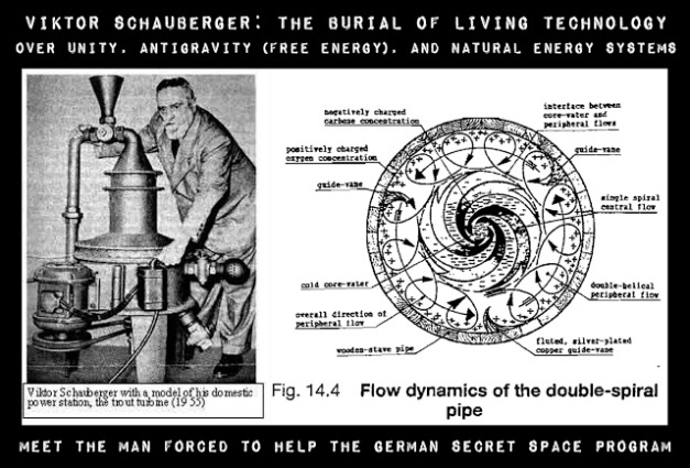 "Image result for schauberger ""they took everything from me"""