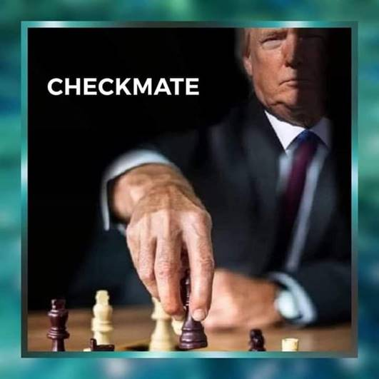 PANIC (Patriots are Now in Control): Checkmate!